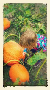 And, most recently, we went pumpkin picking.  Which means that photos of pumpkins and other various gourds will be appearing soon.
